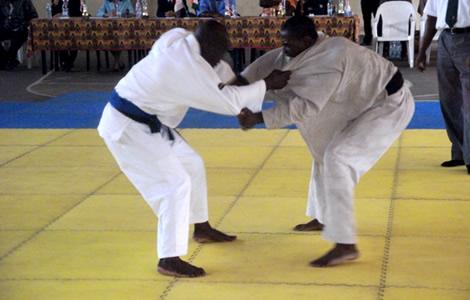 La Côte d'Ivoire vainqueur avec 14 médailles