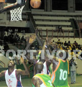 Basket/ CAN 2007 Masculin : Les Eléphants en quart